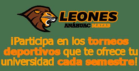 torneos internos leones